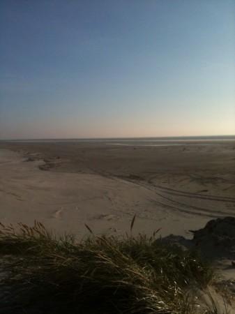 IMG 3390 337x450 Heute endlich mal wieder Strand.....
