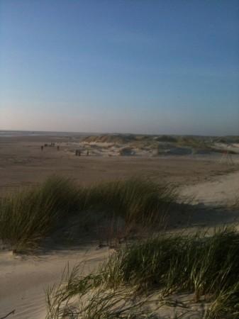 IMG 3391 337x450 Heute endlich mal wieder Strand.....