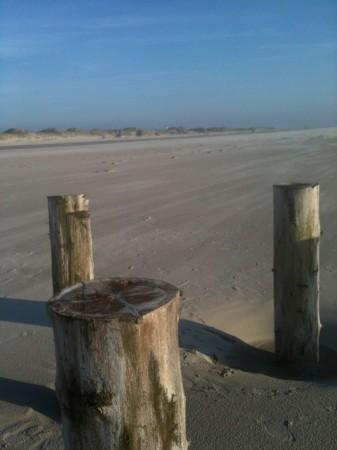 IMG 3402 337x450 Heute endlich mal wieder Strand.....