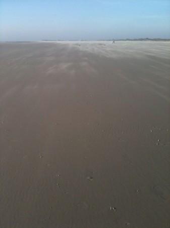 IMG 3407 337x450 Heute endlich mal wieder Strand.....